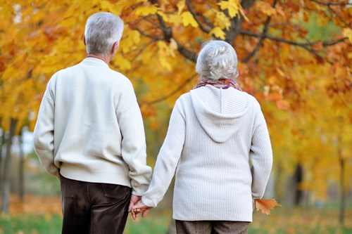 The back of an elderly couple walking through Autumn leaves holding hands